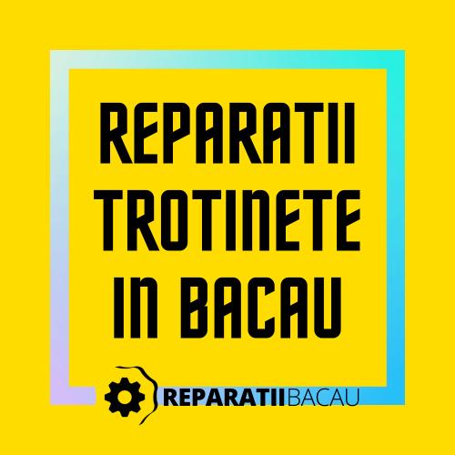 Reparatii trotinete electrice in Bacau, str. Oituz nr. 1 la Reparatii Bacau